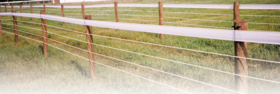 horse rail with white coated high tensile wire